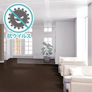 リノコ FCS-011 プレーン 抗ウイルスフロア