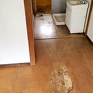 長野県の事例画像