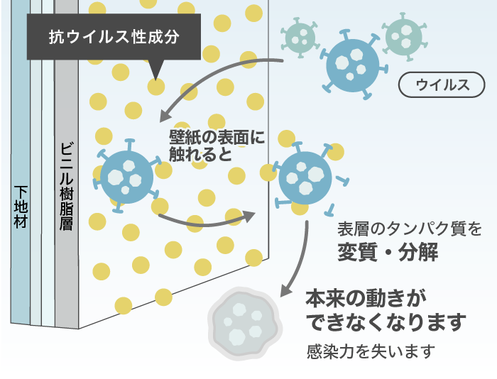 ウイルス表層のタンパク質を変質・分解する