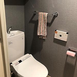 汚れやカビ・菌に強いクロスで、キレイで落ち着いたトイレに