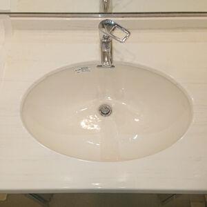 水栓と洗面ボウルを交換して見た目も使い勝手も良くなりました