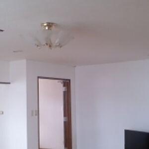 壁紙を新しくし多数のお部屋に明るさが出て開放感のある家に