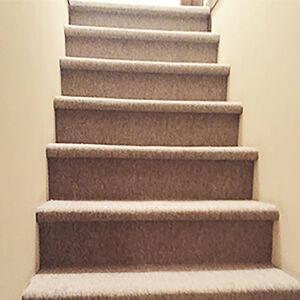 お手入れの大変なカーペットでもキレイを保つサンライム